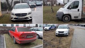Straż Miejska: zero tolerancji dla parkujących na trawnikach