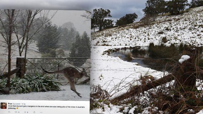 U nas upały, a w Australii rekordowe opady śniegu
